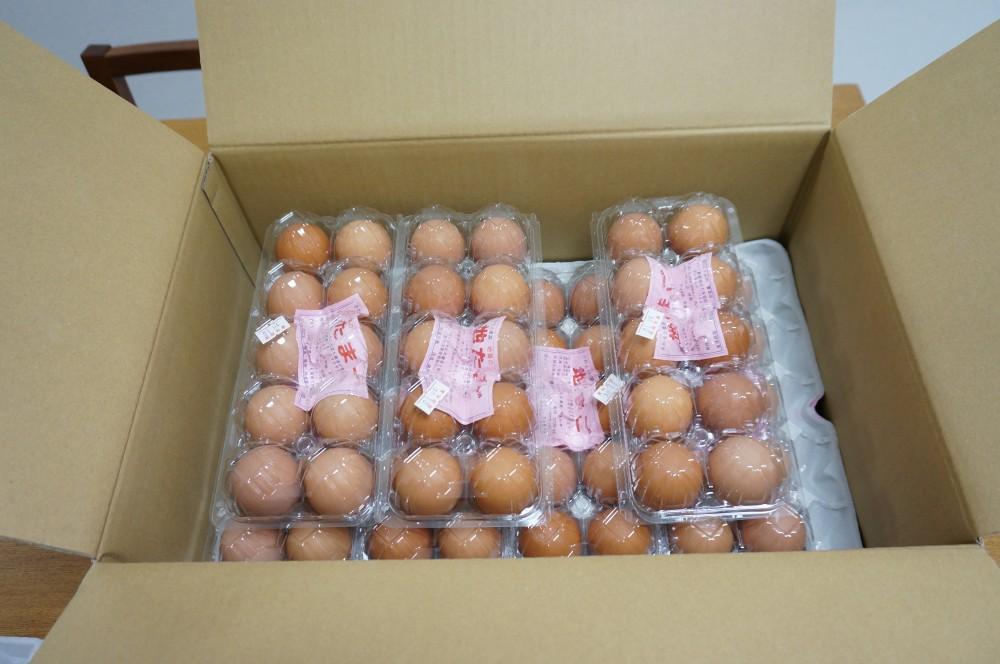 卵7パック