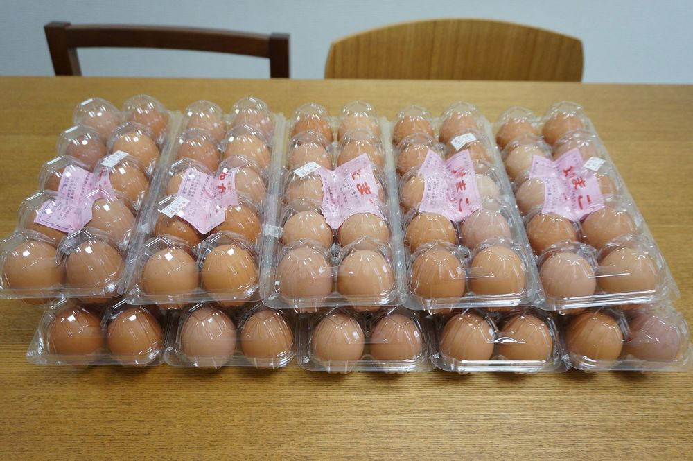 卵1日1パック(10個)は消費する我が家では平飼い薬剤無しのエサで育った地卵を和歌山県から直送してもらっています