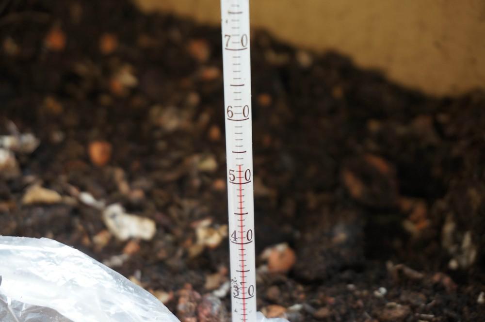 メロン投入で52度の最高温度